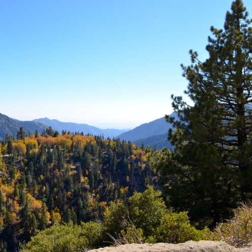 #Fall in Lake Arrowhead,#AfterOrangeCounty.com
