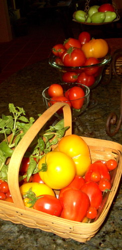 Homegrown Tomato Harvest, www.AfterOrangeCounty.com