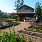 DUKE UNIVERSITY VEGETABLE GARDEN