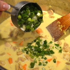 CHICKEN COCONUT CURRY | Recipe By Lifestyle Blogger Celia @ www.AfterOrangeCounty.com