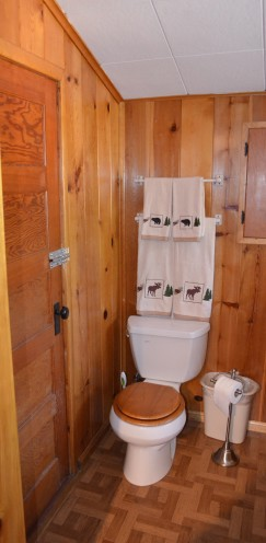 INTRODUCING MY LOG CABIN BATHROOM RENOVATION | www.AfterOrangeCounty.com