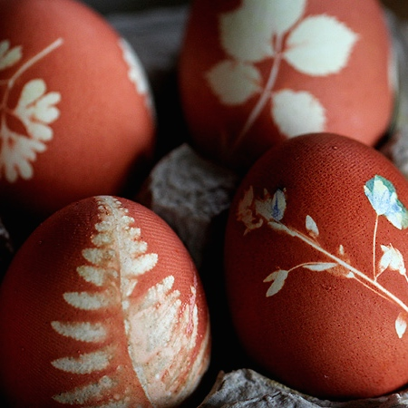 20 TERRIFIC IDEAS FOR DECORATING EASTER EGGS | From Posie Gets Cozy |www.AfterOrangeCounty.com