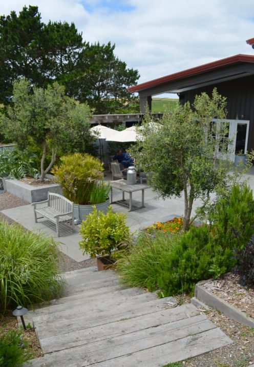 VISITING POINT REYES FARMSTEAD CHEESE COMPANY   www.AfterOrangeCounty.com