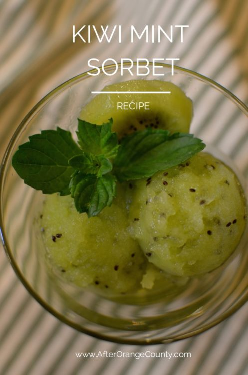 KIWI MINT SORBET RECIPE| www.AfterOrangeCounty.com