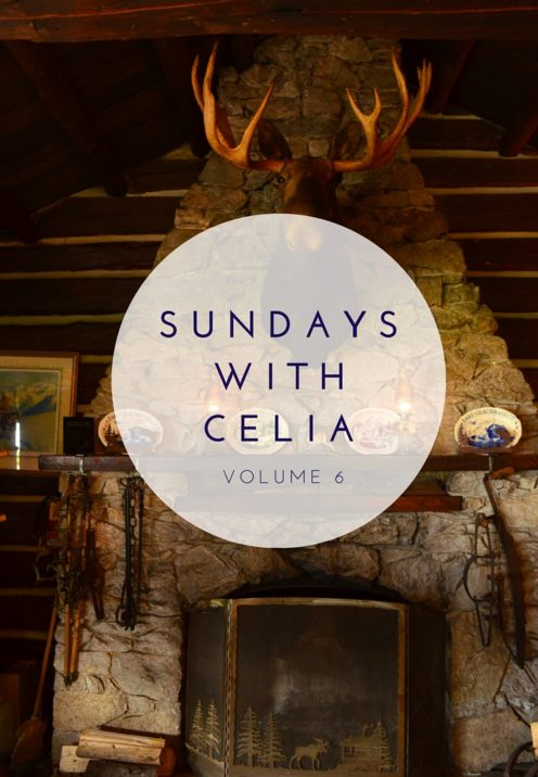 SUNDAYS WITH CELIA VOL 6 | Our Alaska Cruise | www.AfterOrangeCounty.com