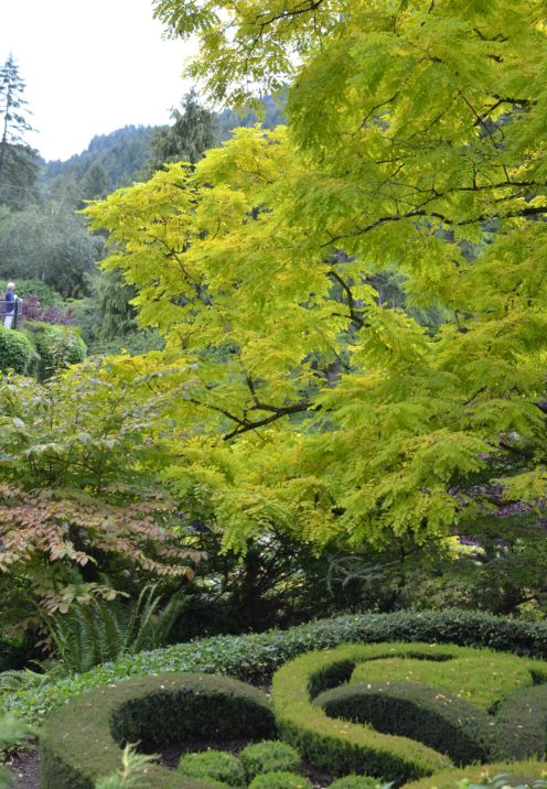 A VISIT TO THE BEAUTIFUL BUTCHART GARDENS | www.AfterOrangeCounty.com