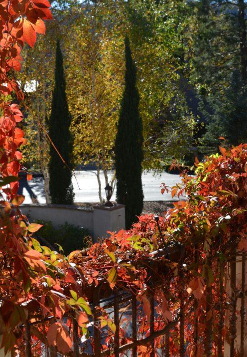 SUNDAYS WITH CELIA VOL 18 | Stonewa| Fall in Lake Arrowhead | www.AfterOrangeCounty.com