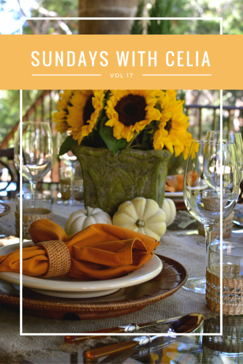 SUNDAYS WITH CELIA VOL 17 | A Fall Luncheon | www.AfterOrangeCounty.com