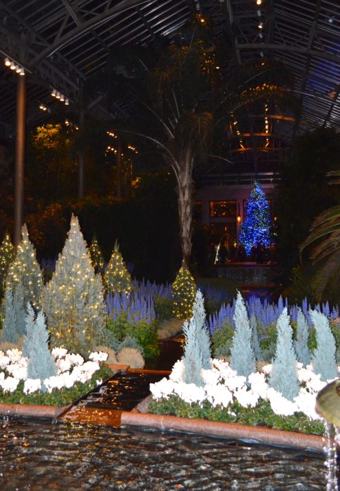 THE MAGNIFICENT LONGWOOD GARDENS AT CHRISTMAS | www.AfterOrangeCounty.com
