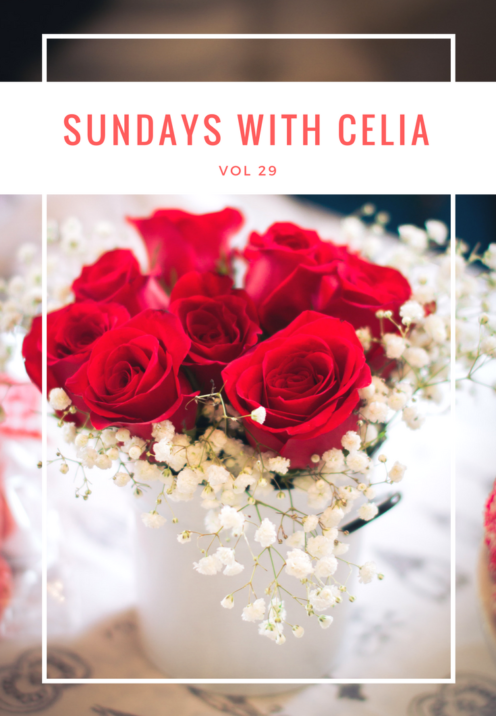SUNDAYS WITH CELIA VOL 29 | Valentine Roses | www.AfterOrangeCounty.com
