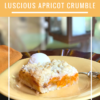 LUSCIOUS APRICOT CRUMBLE