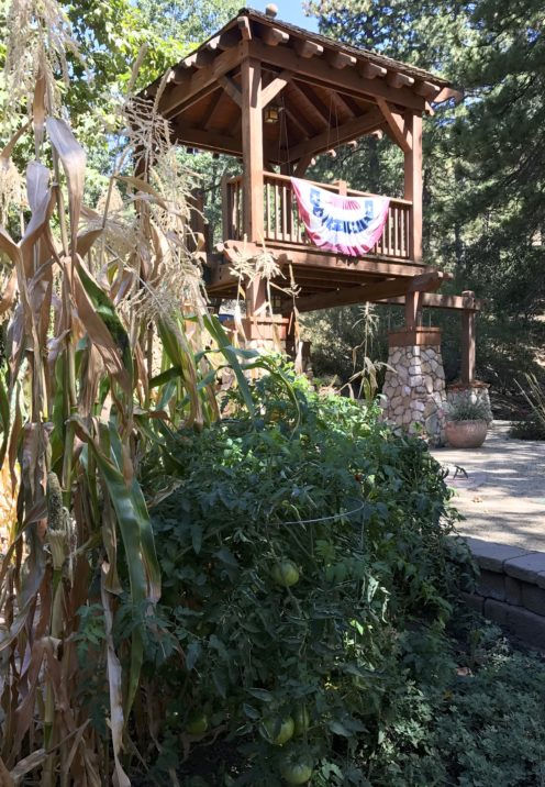LAKE ARROWHEAD'S BEST KEPT SECRET | Sycamore Ranch Vineyard & Winery | www.AfterOrangeCounty.com