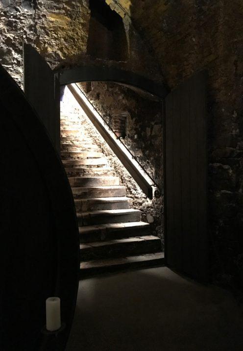 A VISIT TO THE OLDEST WINERY IN AUSTRIA   Nikolaihof Wachau   www.AfterOrangeCounty.com