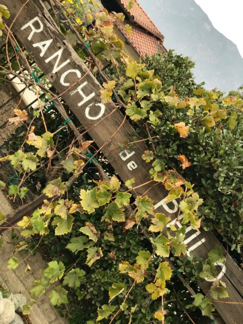 I BET YOU DIDN'T KNOW | Rancho de Philo | A wonderful Sherry Winery in SoCal | www.AfterOrange County.com