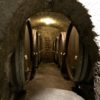 A VISIT TO THE OLDEST WINERY IN AUSTRIA