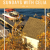 SUNDAYS WITH CELIA VOL 46