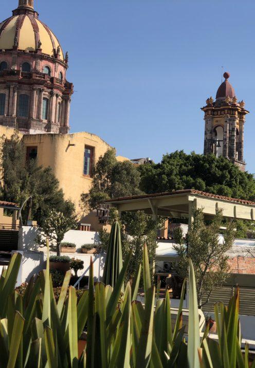 SUNDAYS WITH CELIA VOL 51 | San Miguel de Allende Mexico | www.AfterOrangeCounty.com
