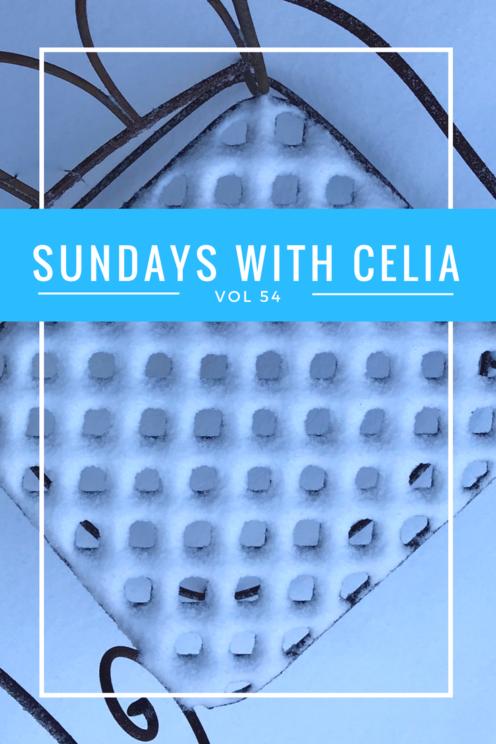 SUNDAYS WITH CELIA VOL 54 | Snowy Lake Arrowhead | www.AfterOrangeCounty.com