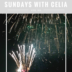 SUNDAYS WITH CELIA VOL 60 | Lake Arrowhead Fireworks | www.AfterOrangeCounty.com