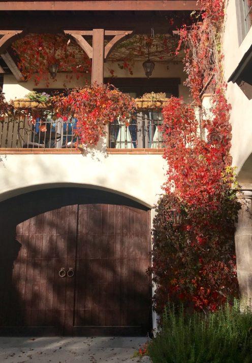 SUNDAYS WITH CELIA VOL 65 | www.AfterOrangeCounty.com | Fall in Lake Arrowhead