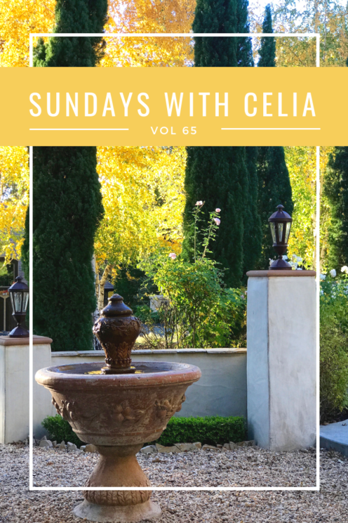 SUNDAYS WITH CELIA VOL 65 | www.AfterOrangeCounty.com