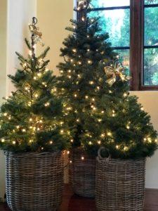 SUNDAYS WITH CELIA VOL 72   My Christmas Decor   www.AfterOrangeCounty.com