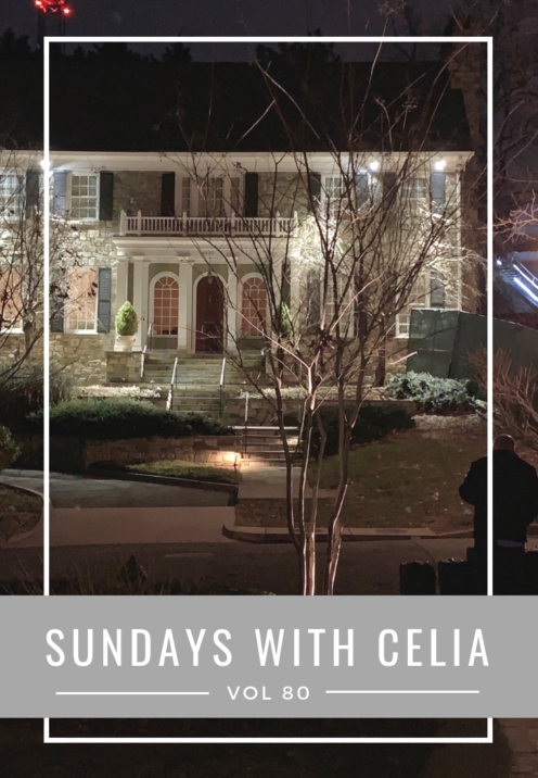 SUNDAYS WITH CELIA VOL 80 | Washington, DC | www.AfterOrangeCounty.com