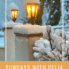 SUNDAYS WITH CELIA VOL 81
