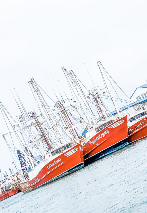 A VISIT TO BEAUFORT BY BOAT | Shrimp Boats | www.AfterOrangeCounty.com