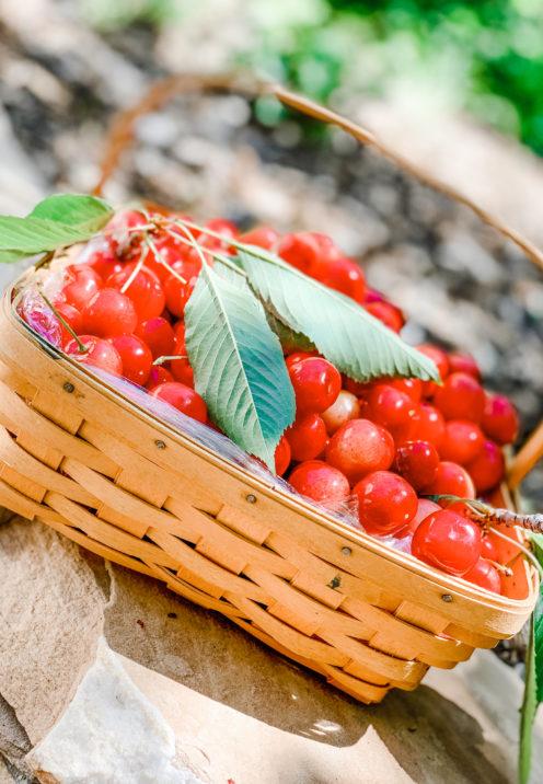SUNDAYS WITH CELIA VOL 90 | Homemade Cherry Pie Recipe | www.AfterOrangeCounty.com
