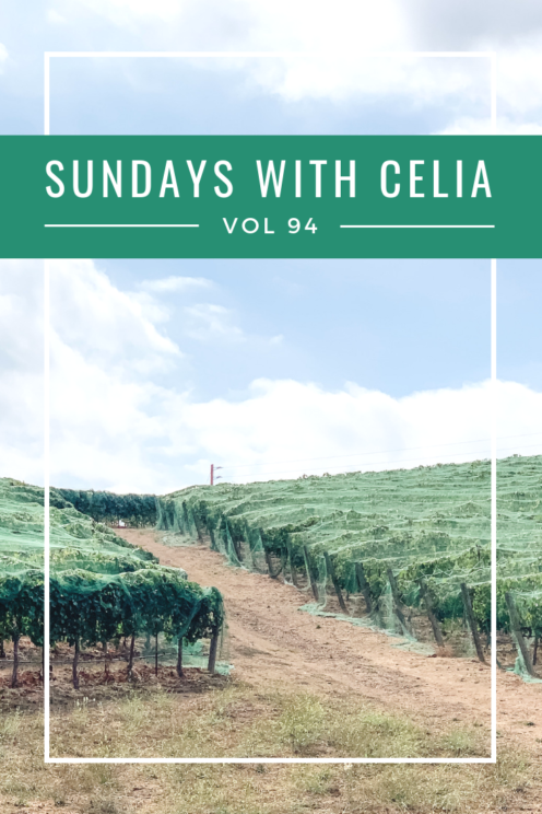 SUNDAYS WITH CELIA VOL 94 | Book Club at Fallbrook Winery | www.AfterOrangeCounty.com