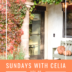 SUNDAYS WITH CELIA VOL 95 | Fall in Lake Arrowhead | www.AfterOrangeCounty.com