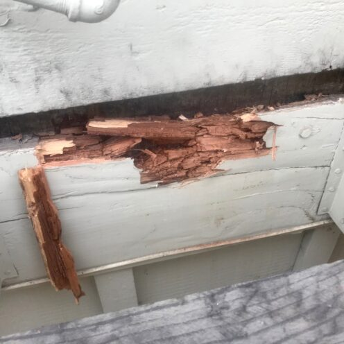 WHAT SERVICES ARE NEEDED TO KEEP A HOME SAFE? | Dry rot | Pest Control | www.AfterOrangeCounty.com