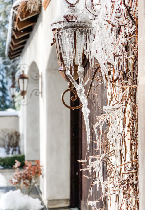 SUNDAYS WITH CELIA VOL 102 | What Spring Looks Like in Lake Arrowhead | www.AfterOrangeCounty.com #LakeArrowhead #HouseForSale