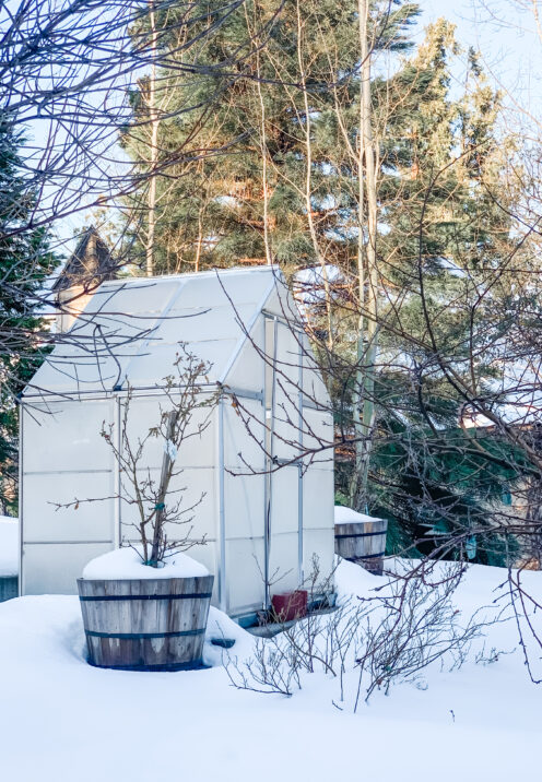 SUNDAYS WITH CELIA VOL 102 | What Spring Looks Like in Lake Arrowhead | www.AfterOrangeCounty.com #LakeArrowhead