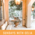 SUNDAYS WITH CELIA VOL 103 | Spring in Lake Arrowhead, California | www.AfterOrangeCounty.com #HouseForSale