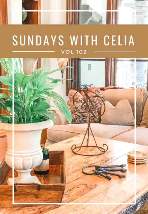 SUNDAYS WITH CELIA VOL 102 | Life in Lake Arrowhead | www.AfterOrangeCounty.com #LakeArrowhead #HouseForSale